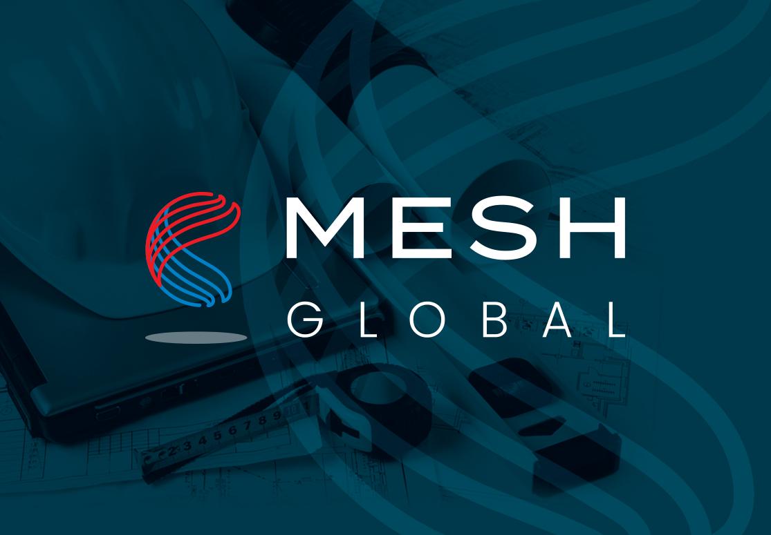 mesh2
